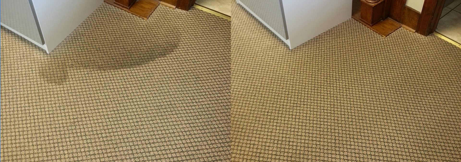 Eco Friendly Carpet professional carpet cleaning services pa and md